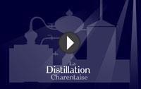 Schéma de la distillation selon le BNIC